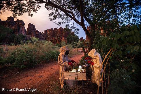 Burkina-Faso-Miel-Franck-Vogel-36.jpg