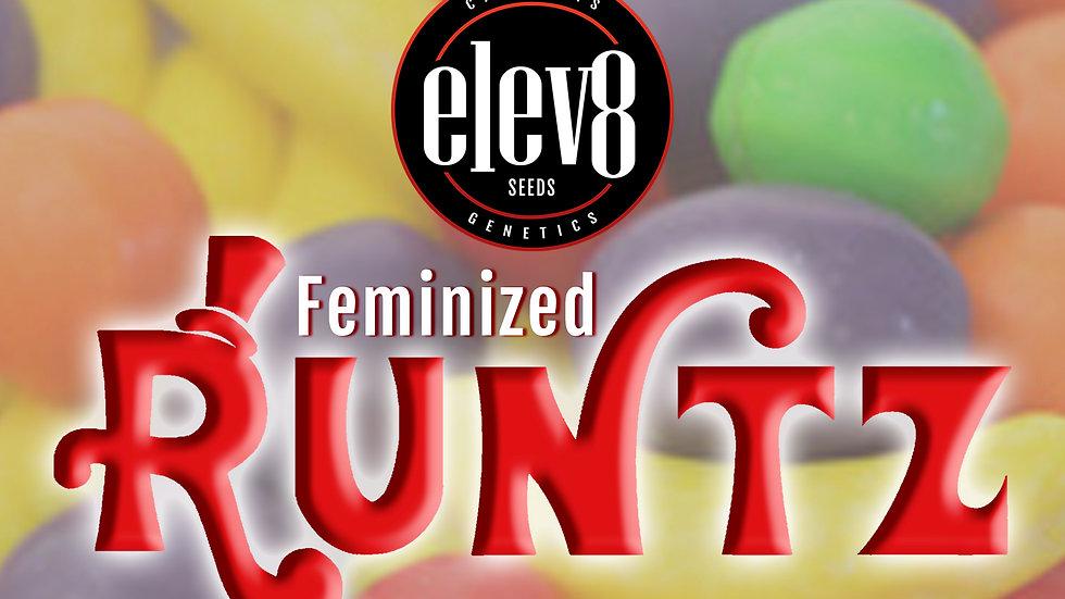 Runtz - Feminized - 6pk