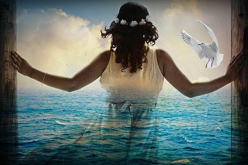 Liberté, mer, respirer, oiseau