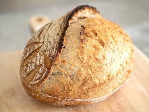 White Sourdough 100% Wheat