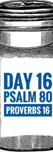 Day 16 Psalm 80 + Proverbs 16