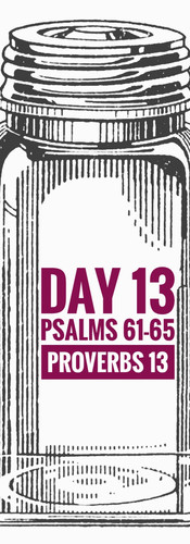 Day 13 Psalms 61-65 + Proverbs 13