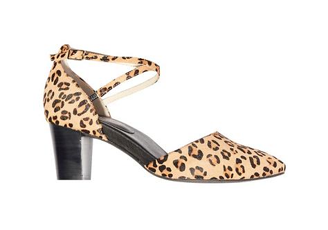 Frankie 4 - Tessa Leopard