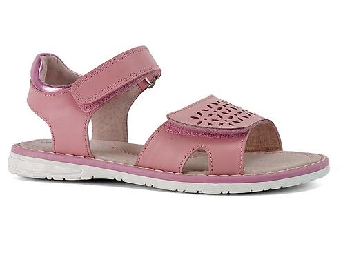 Surefit - Flick Pink