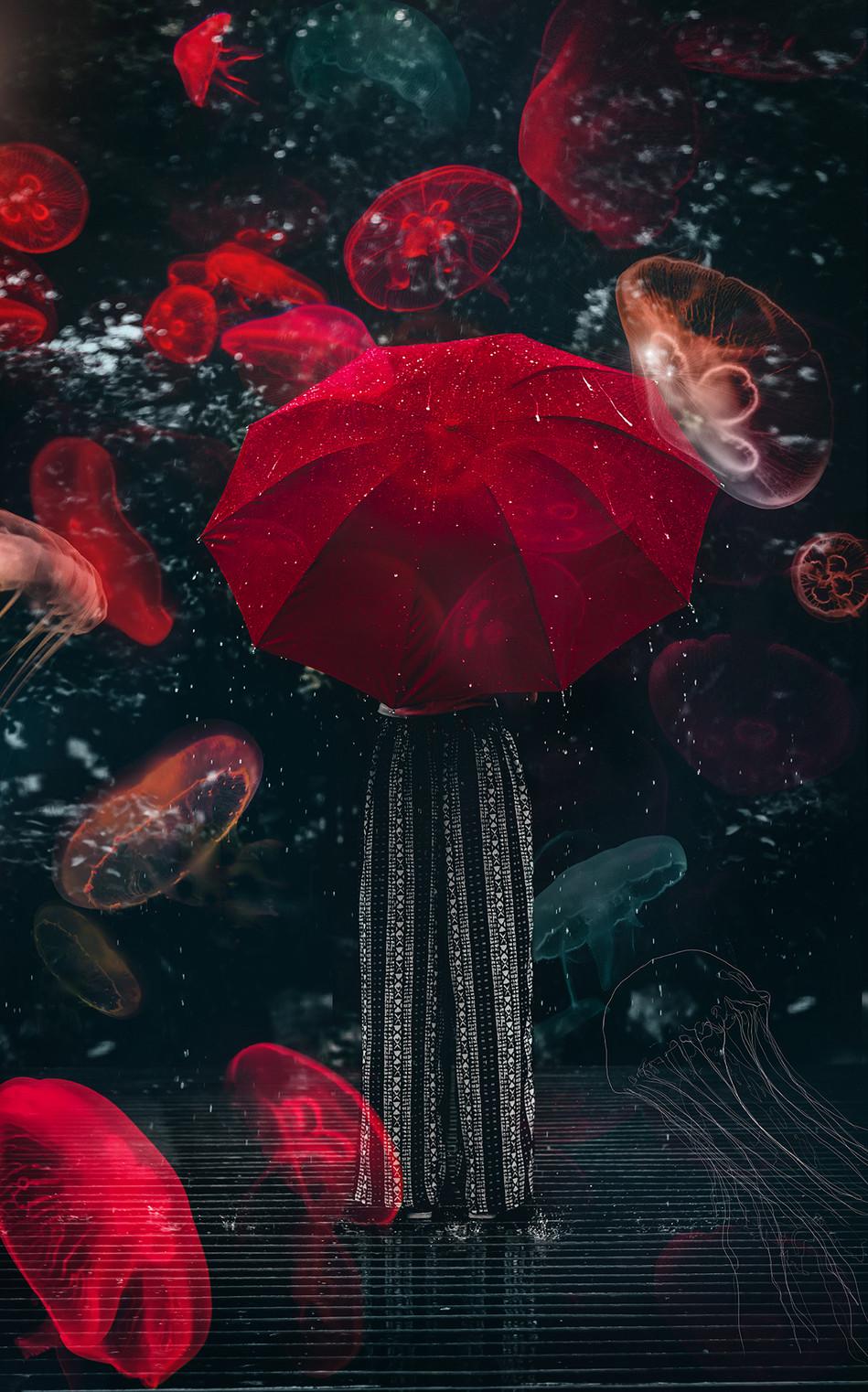 Jelly dance- II