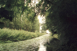 Anglesey Abbey's Lode