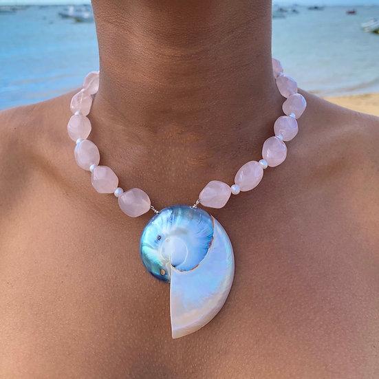 Nautilus shell necklace