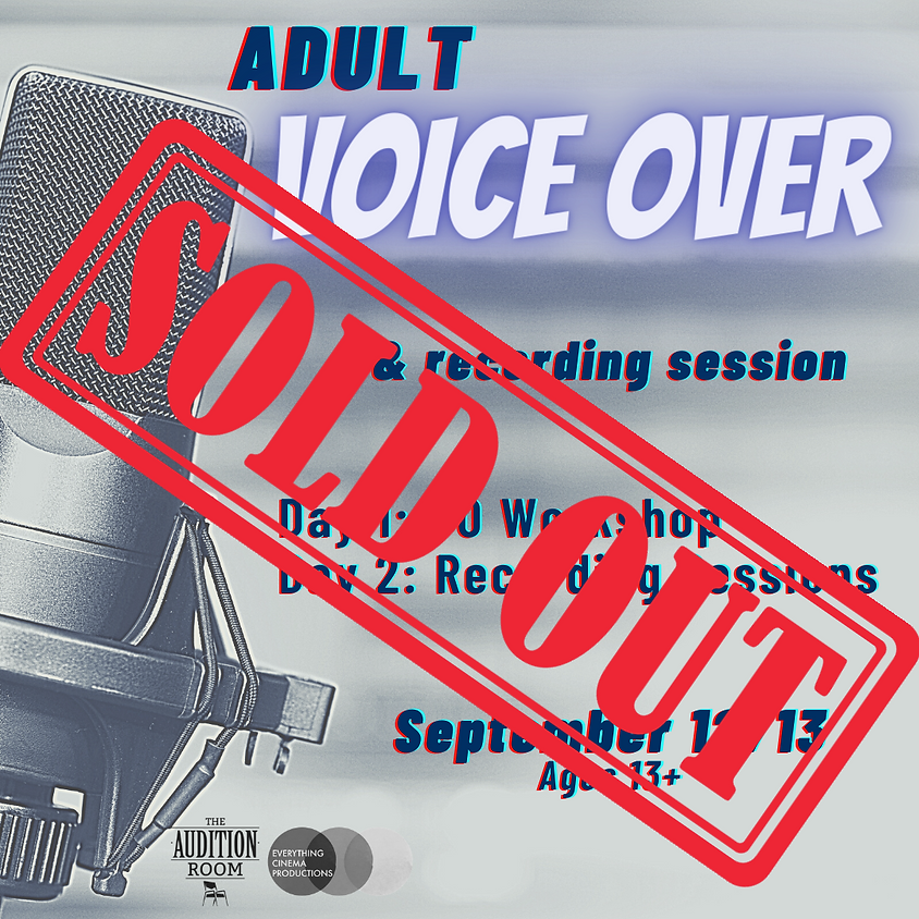Adults Voice Over Workshop and Recording Session
