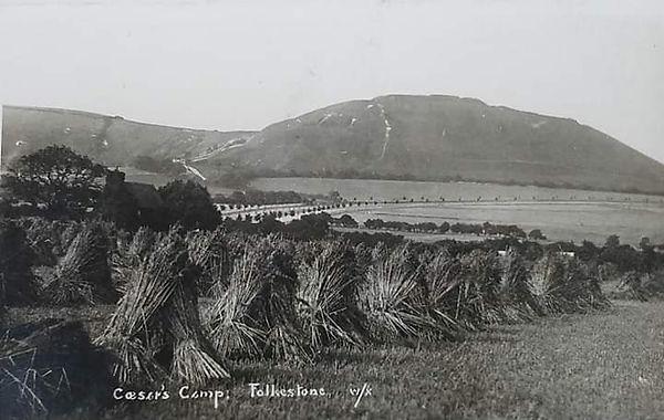 1800s Broad Mead farm.jpg