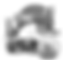 Logo_OSGB_BN_no_sfondo.png