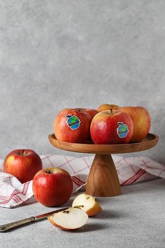 gülbudak fuji elma
