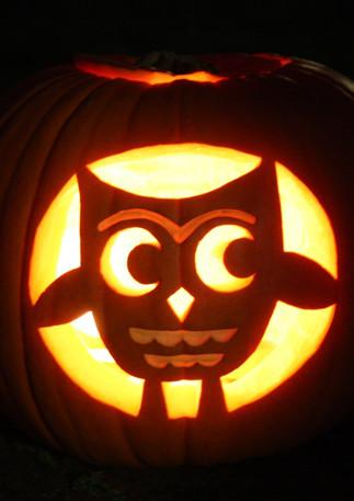 project pumpkin.jpg