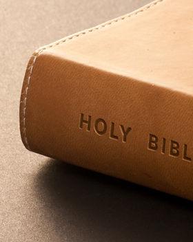Bible preaching