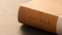 The Apostle John Book Study Narrative