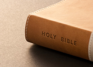 What the Bible Has to Say About