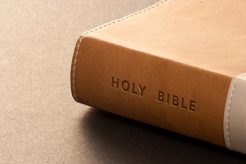Biblical Interpretation 1 - Principles