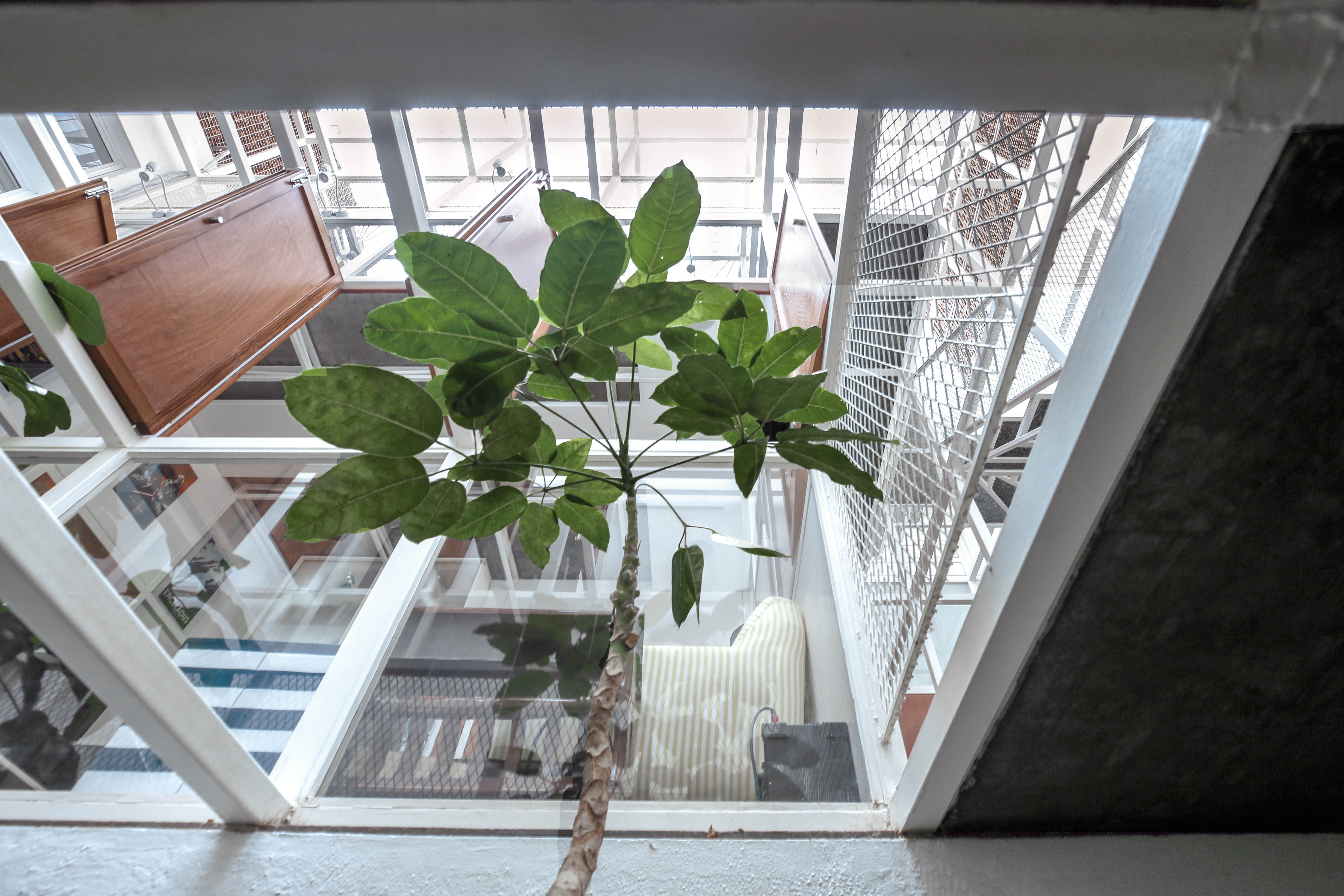 View looking up from internal garden
