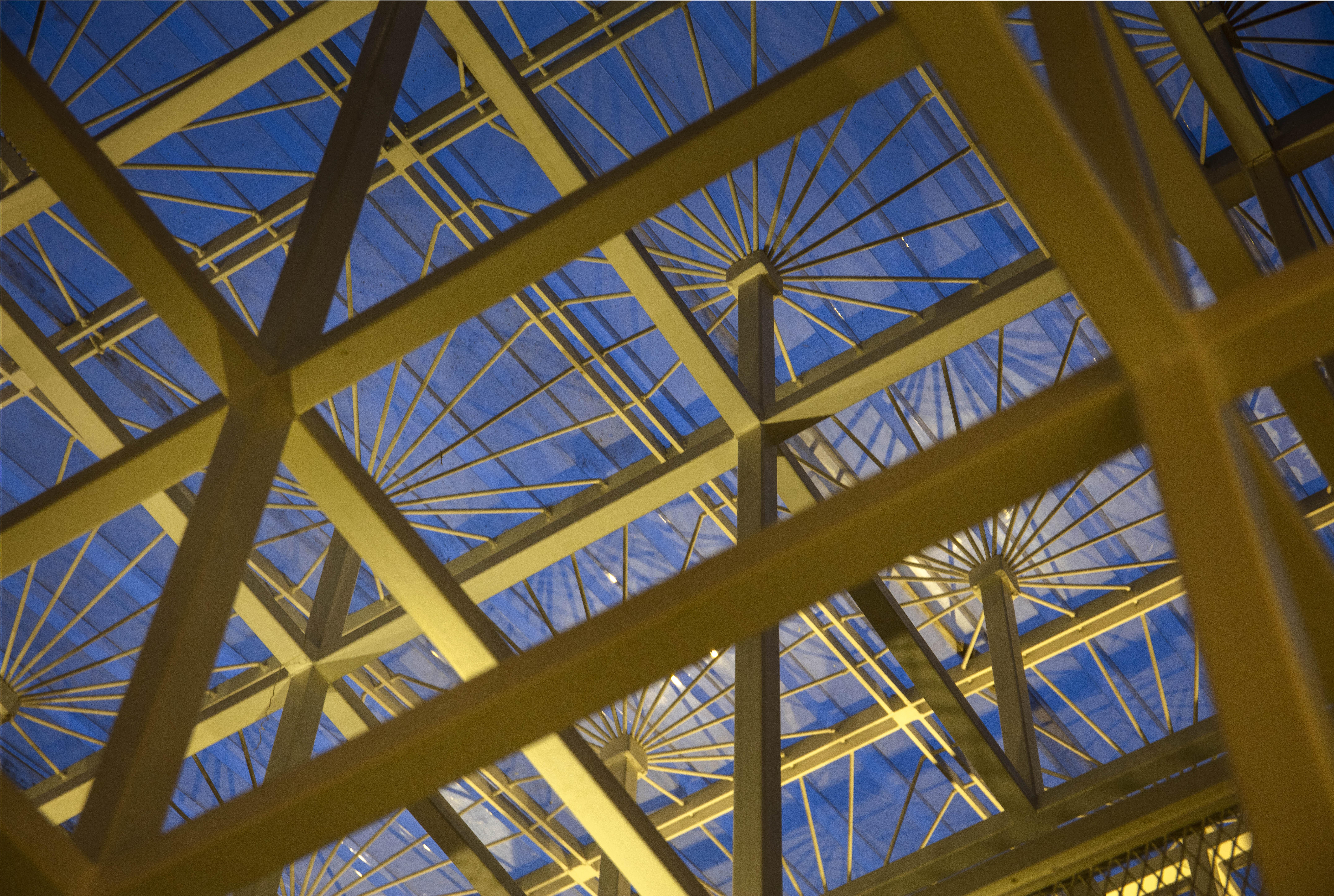 Skylight Roof Detail