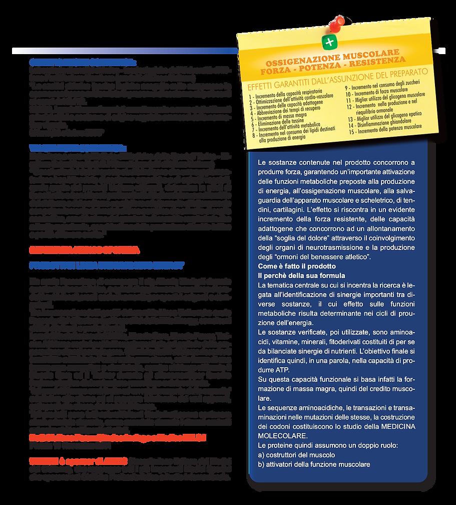 note e valutazioni STAMPA.png