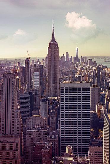 Fine Art _ United States _ New York _ n01
