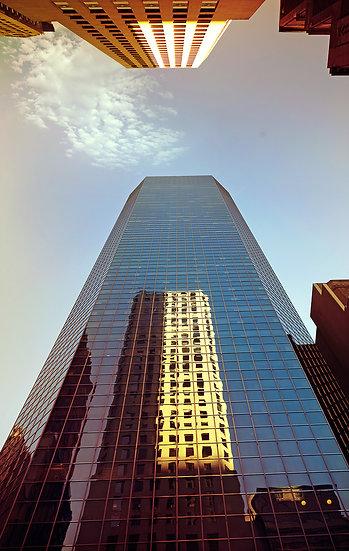 Fine Art _ United States _ New York _ n08