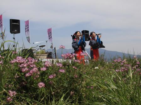第4回富士山れんげまつり、4月22日に開催決定