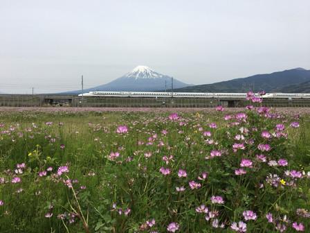 4月22日(土)satvサタハピ内にて生中継