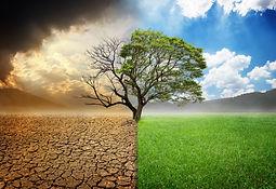 nettoyage et harmonisation énergétique des lieux