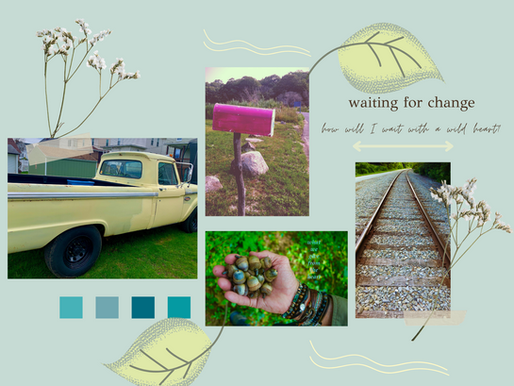 Photo Journal- Wild Heart