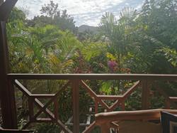 vue de la terrasse donnant sur le jardin