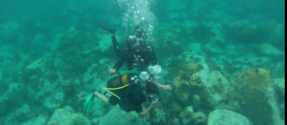 Des moniteurs compétants Espace Plongée Martinique