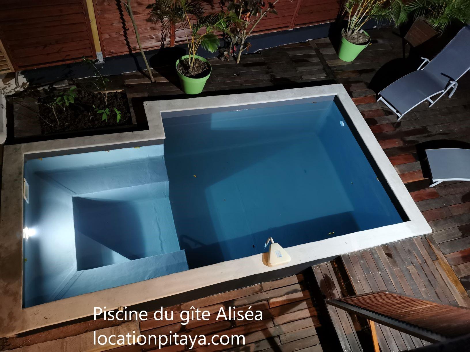 Piscine gîte Aliséa