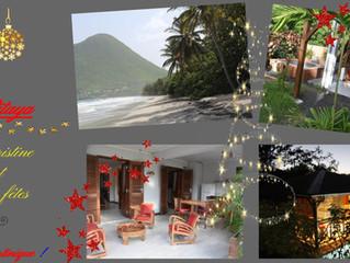 Location Pitaya vous souhaite de joyeuses fêtes de fin d'année !