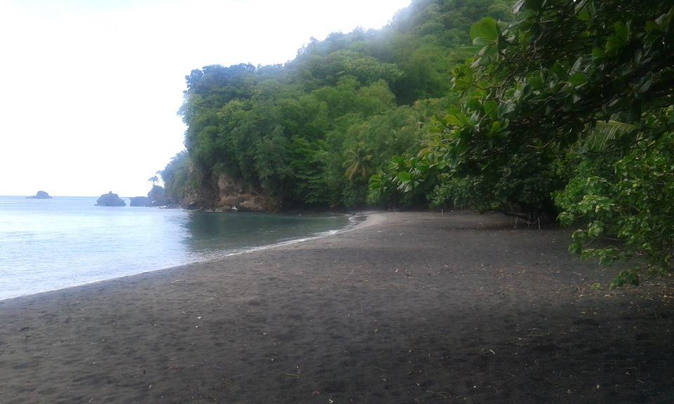 Anse Couleuvre locationpitaya