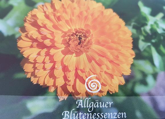Allgäuer Blütenessenz Ringelblume - Das Leben bejahen