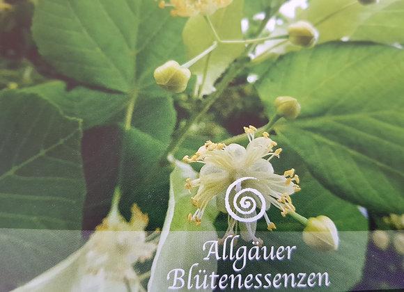 Allgäuer Blütenessenz Linde - Nächstenliebe spüren
