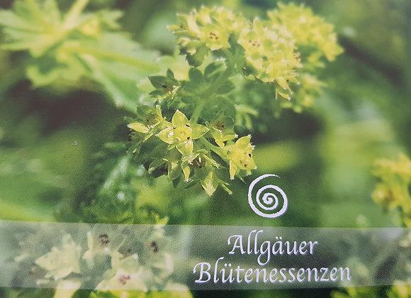 Allgäuer Blütenessenz Frauenmantel - Weiblichkeit annehmen