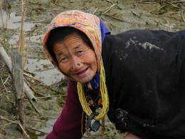 Tribes 2013 Arunachal Pradesh