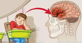 Train Your ADHD Brain. A Neuroscientist Interview.