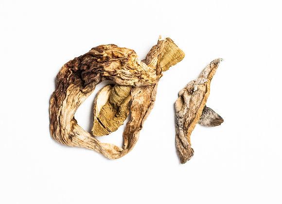 Porcini Mushrooms, Dried