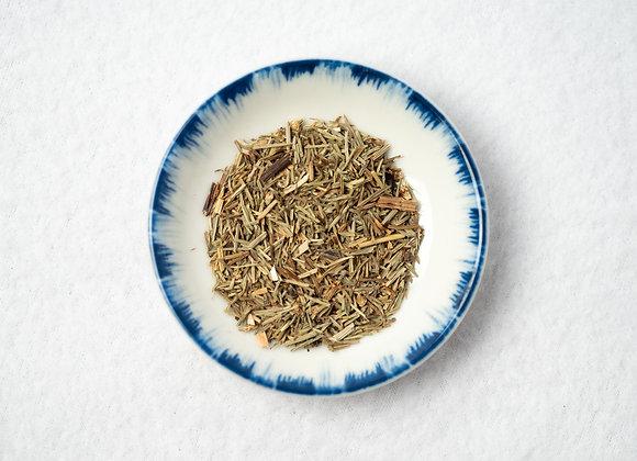 Horsetail Herb (Shavegrass)