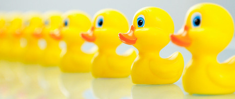 Estate Planning: Are Your Ducks in a Row?