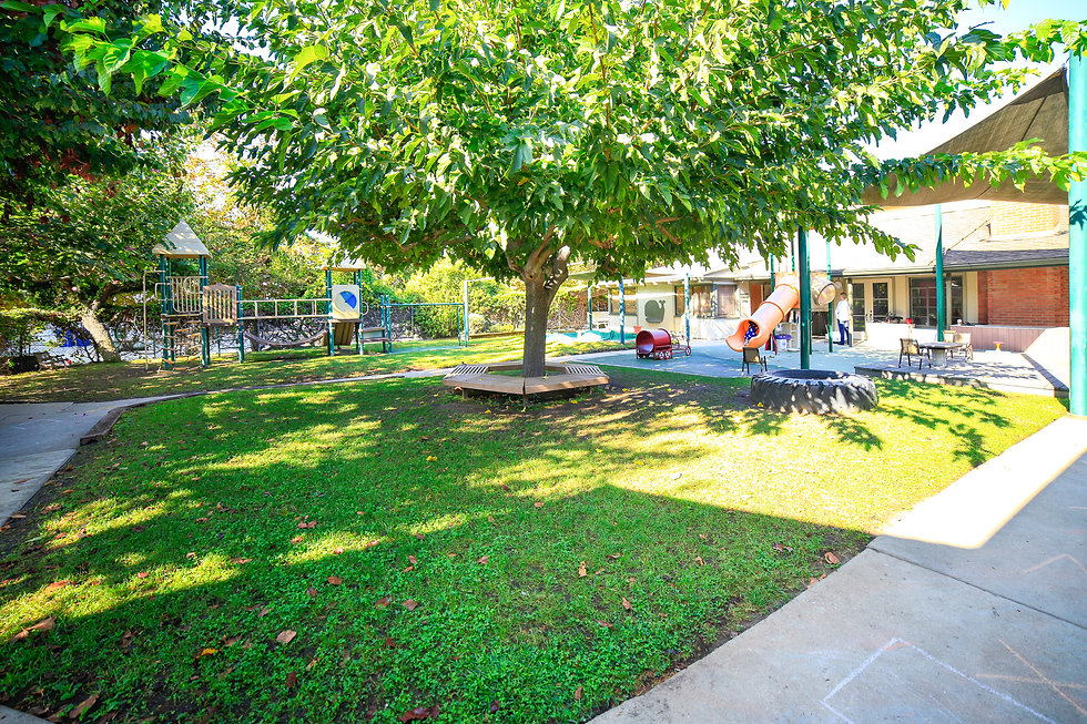 St. John's Nursery Nursery School Preschool Large Play Yard Playground Outdoor Space