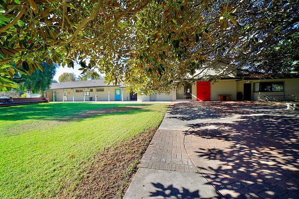 grassy area 2.jpg