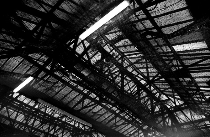Perception 132: Roof Nettings, Waterloo Station, London