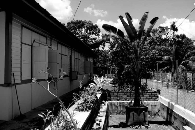 Perception 143: Backyard, Tampin