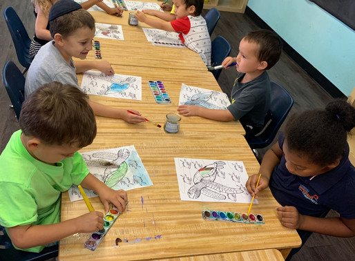 Why Choose a Montessori Education for Your Child?
