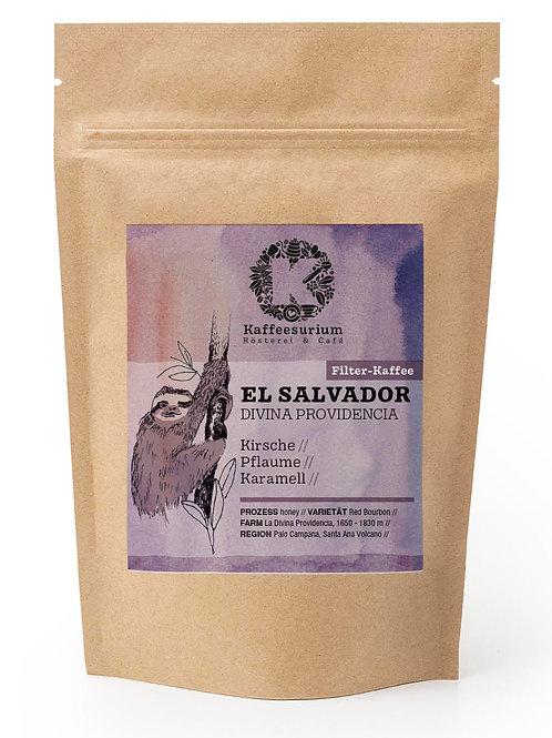 El Salvador Divina Providencia  | 250g | Kaffeesurium | Filter Kaffee