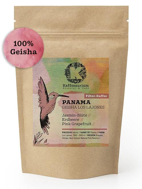 Panama Geisha Los Lajones | 250g | Kaffeesurium | Filter Kaffee