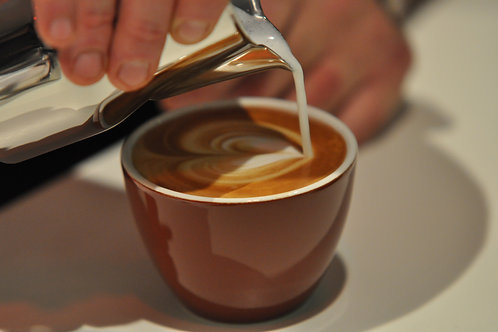 Latte Art Gastro Kurs